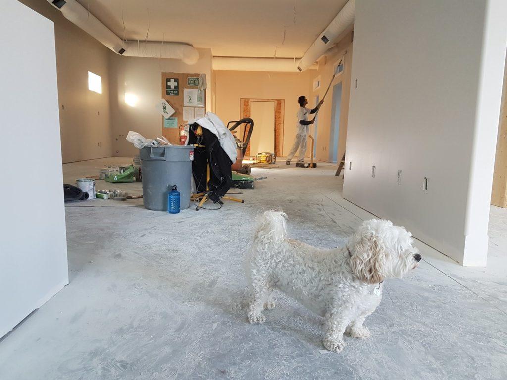 Правила поведения в арендуемой квартире