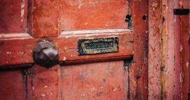 покрытие входной двери